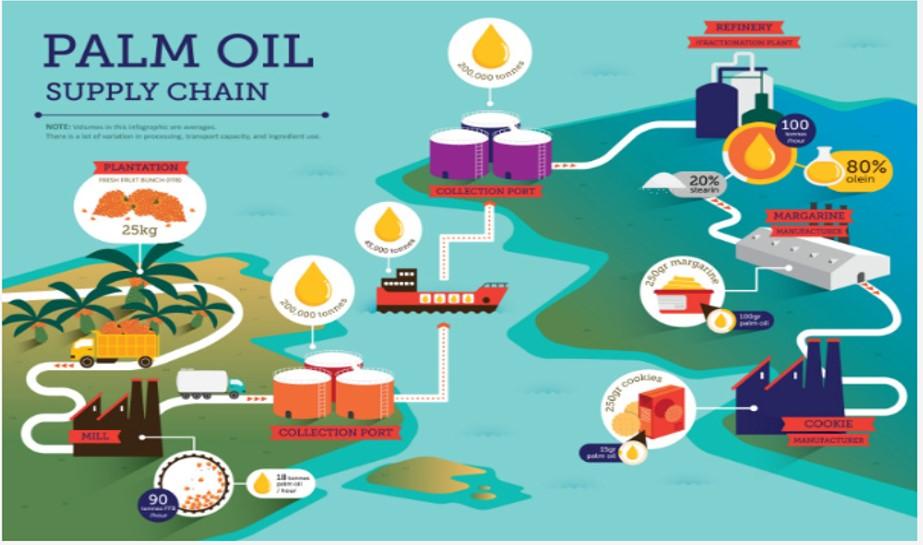 RSPO Supply Chain 2